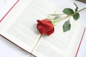 rose-615259_1280